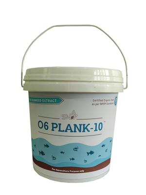 Plank10